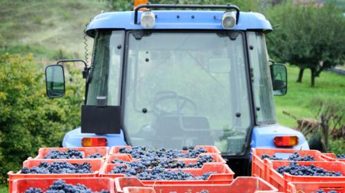 Agricultural Sales management